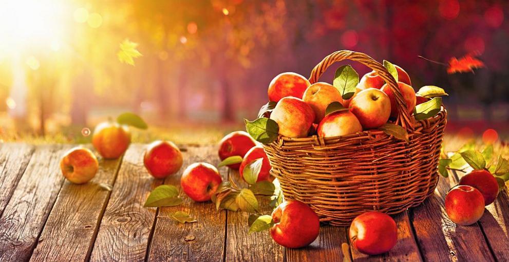 Ябълката – царицата на плодовете
