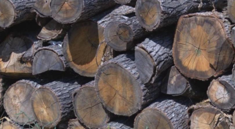 Недостиг на дърва и пелети, цените им скачат