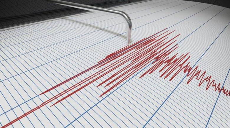 Земетресение е усетено тази нощ в Плевенска област