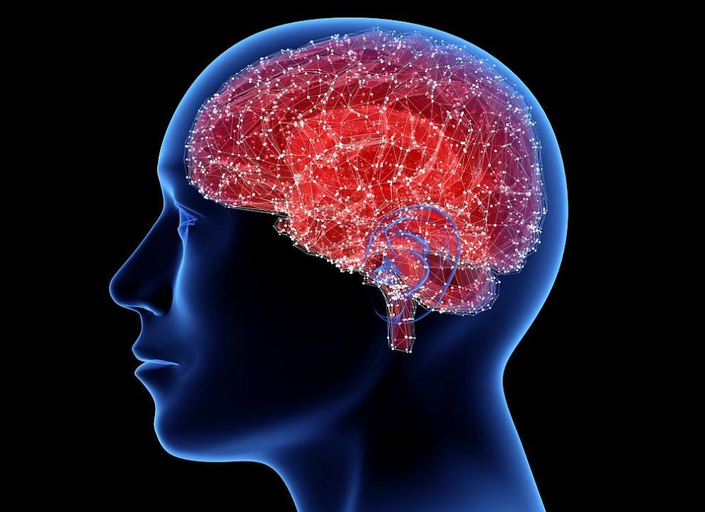 Тези храни вредят на мозъка ви, избягвайте ги