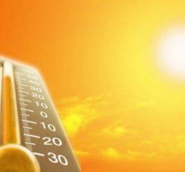 Рекордни жеги в Кипър