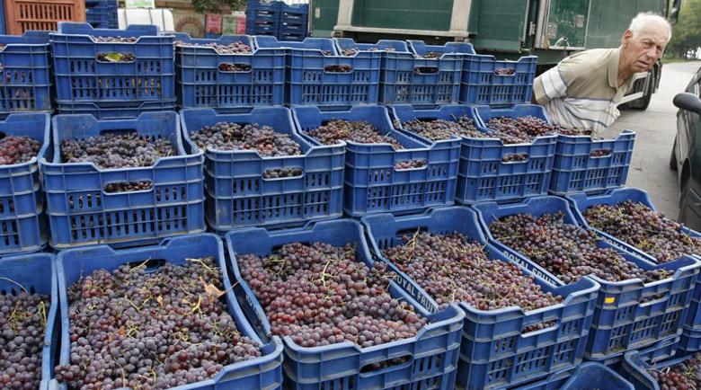 Повече от половината от виното на пазара у нас е нелегално