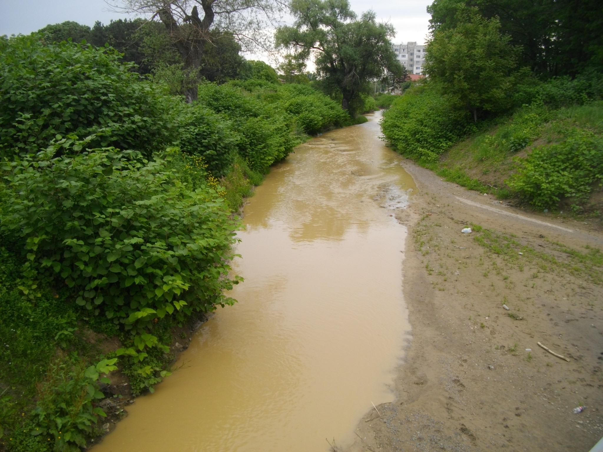 Сигнали за наводнени ниски части на жилища и паднали дървета са подадени в Областния щаб за реакция при бедствия и аварии в Благоевград