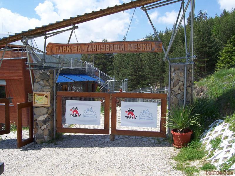 Силен туристически интерес към мечешкия парк и други обекти в общината отчитат в Белица