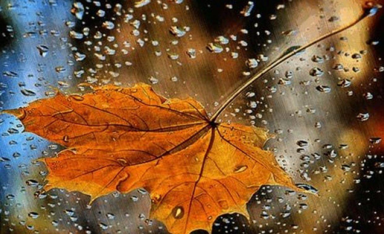 Оранжев код за дъждове в 5 области днес