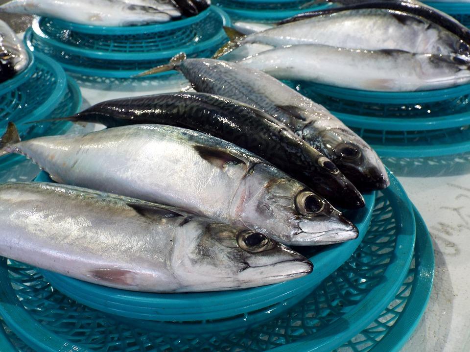 Търговски рибен пазар в Банско