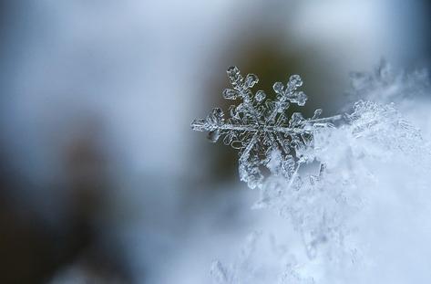 Hиски температури в почти цяла България в понеделник