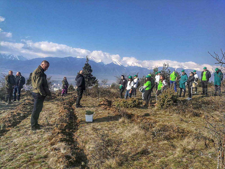 Седмицата на гората стана чудесен повод учители и ученици от ПГ по МСС – Разлог да дадат своя принос за по-чиста околна среда