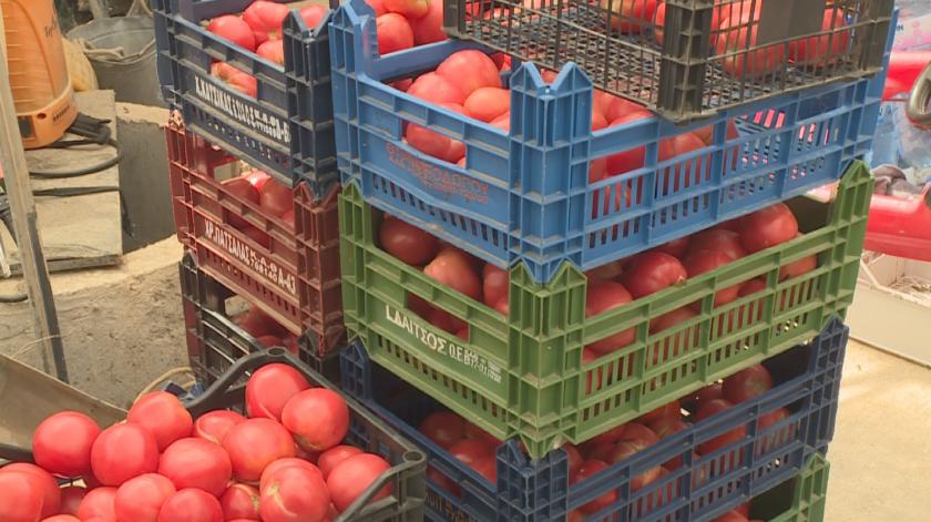 Земеделци от Сандански искат големите вериги да изкупуват над 50% от продукцията им