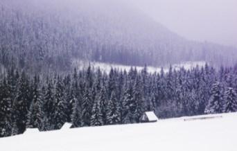 Планинските райони на Северна Гърция посрещнаха първия сняг за сезона